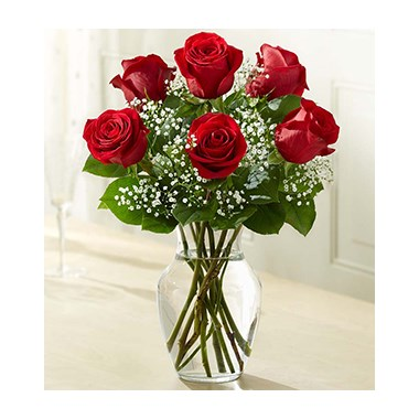 6-roses-in-a-beautiful-vase-for-them
